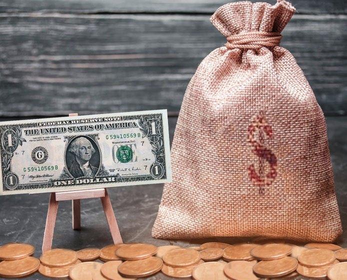 درآمد دلاری از دمنوش نیوشا